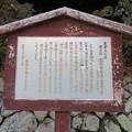 Photos: 三井寺(園城寺。大津市)園城寺塔婆(三重塔)