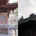 Photos: 三井寺(園城寺。大津市)護法善神堂
