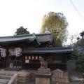 和田神社(大津市)