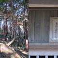 Photos: 安土城(近江八幡市)御茶屋平/巡礼地 御堂