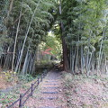 Photos: 八幡山城屋敷(秀次館。近江八幡市営 八幡公園)大手道