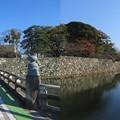写真: 彦根城(彦根市)京橋口・中堀