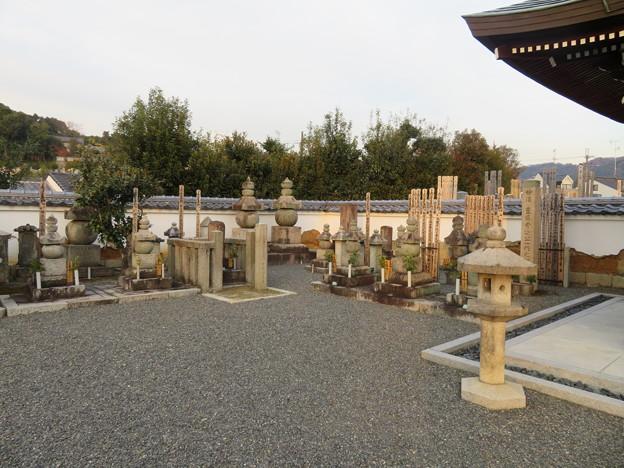 Photos: 善正寺(左京区)豊臣秀次公一門之供養塔
