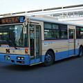 IMG_3908-e01