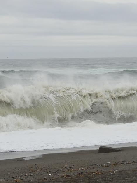 太平洋の波