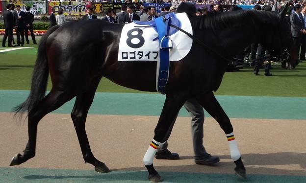 ロゴタイプ(2回東京12日 10R 第80回 東京優駿 日本ダービー(GI)出走馬)