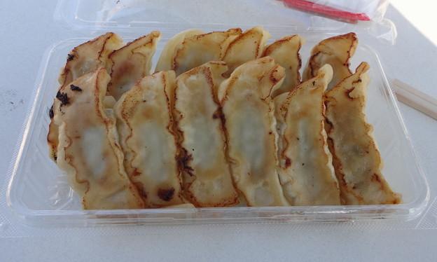 宇都宮餃子(12個)