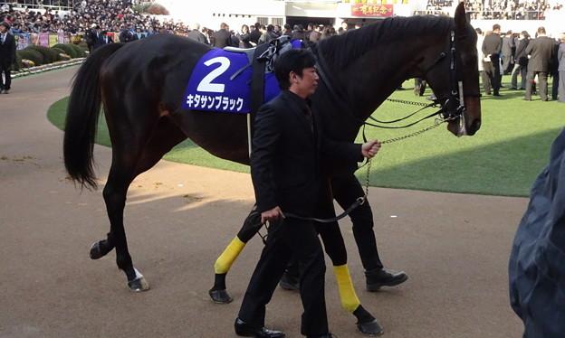 キタサンブラック(5回中山8日 11R 第62回グランプリ 有馬記念(GI)出走馬)