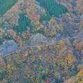 写真: ナメコ谷