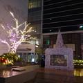 2017.12.8三ノ宮「光のデッキ回廊」