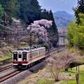 春列車日光号