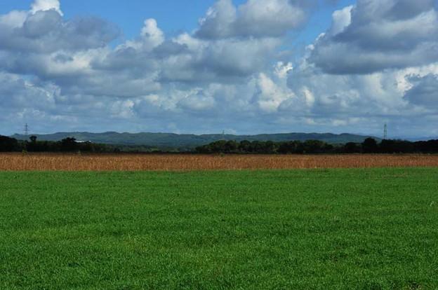 草原と畑と山と空と・・・