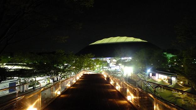 西武ドーム夜景3
