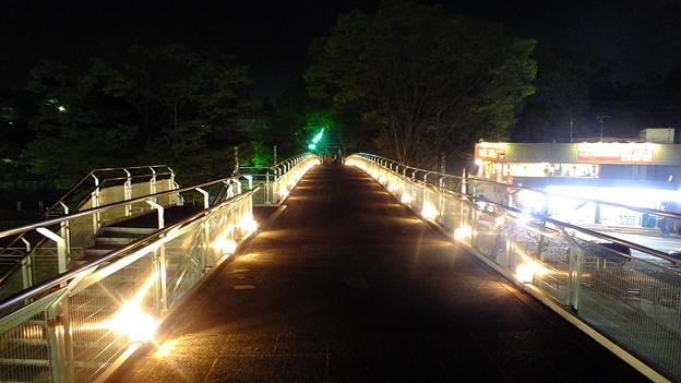 ドームへ続く歩道橋