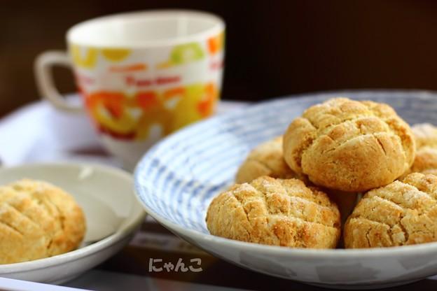 Photos: ~ミニメロンパン~