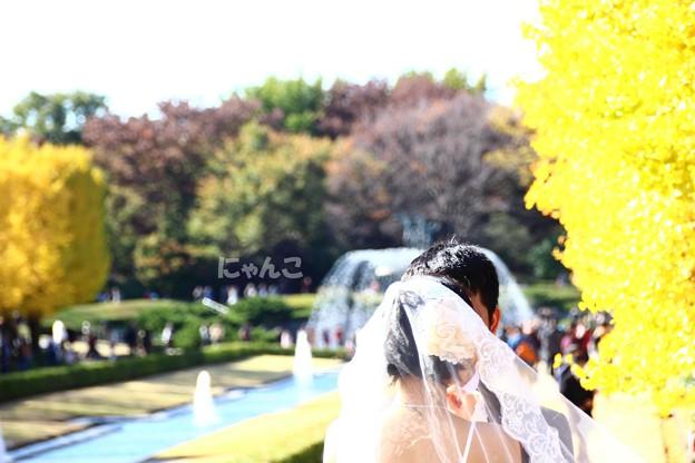 Photos: ~幸せのエッセンス~