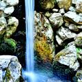 日吉大社の小さな滝