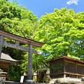 Photos: 丹生川上神社・下社の境内