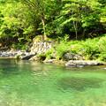 写真: 丹生川の流れ