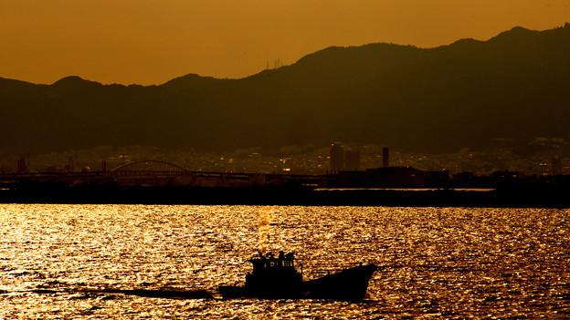 写真: 神戸の町をバックに