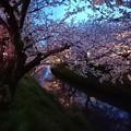 千葉県 船橋 海老川
