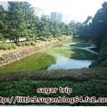 Photos: 皇居2