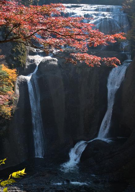 写真: 袋田の滝