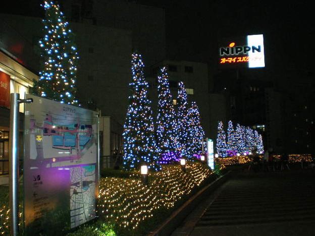写真: 20091007_3021245