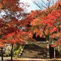 写真: 秋滿庭