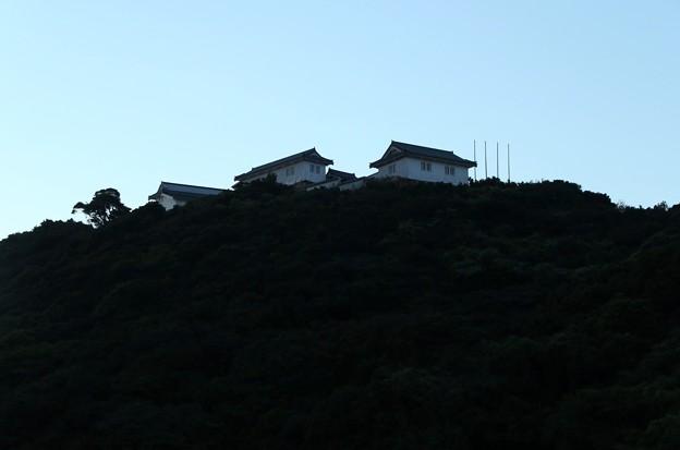 写真: 山の上の城跡