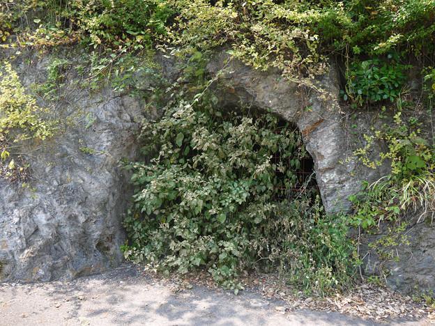 濃霞山山麓、佐伯重工業横の壕(1)