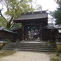 錦帯橋・吉香神社(2)