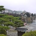 桜の錦帯橋。曇り・・・(20)