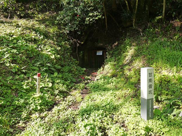 Photos: 石見銀山(2)甘南備抗