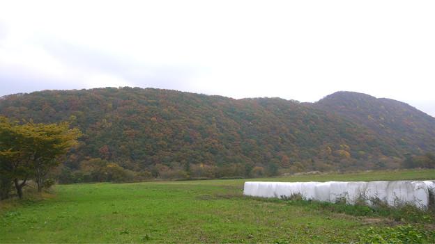 大山の紅葉(1)