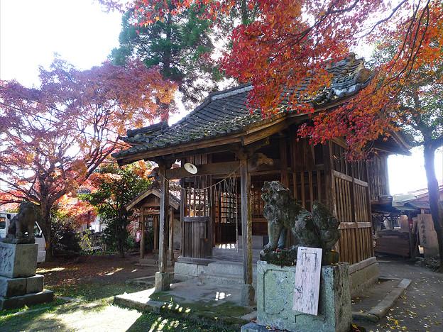 秋月~須賀神社の紅葉(5)