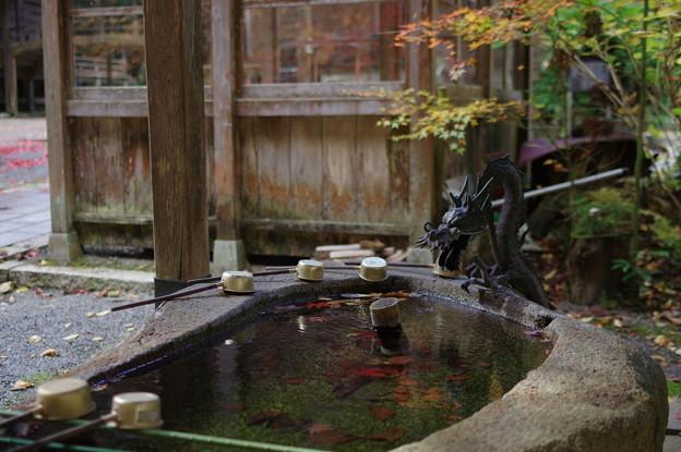 写真: 秋水