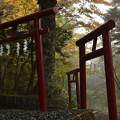 写真: 新屋山神社 本宮(富士吉田)