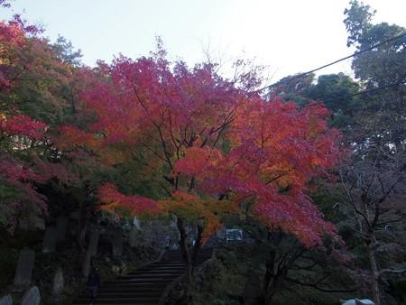 kenntyouji_kamakura44