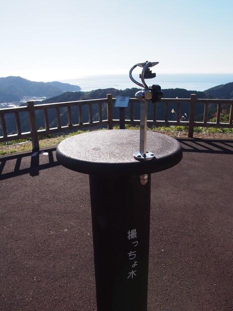 写真: tosaokitsusakatenboudai05
