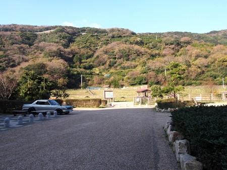 kamegaike02