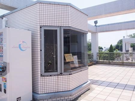 tokiwakouen_seituujiyama12