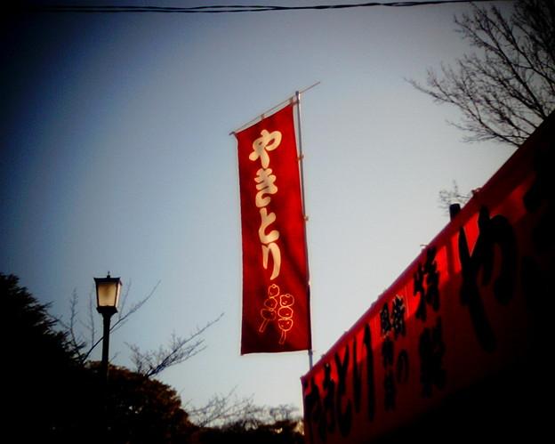鶴ヶ岡八幡宮