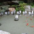 写真: 昇仙峡07