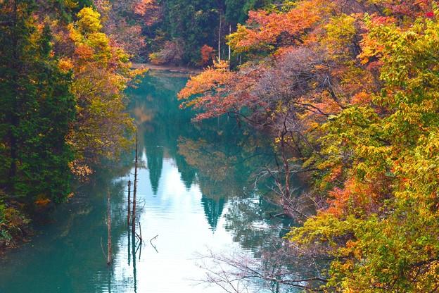 徳山ダム-22