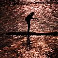 写真: ~Stand up paddle surfing(スタンドアップパドル・サーフィン)~