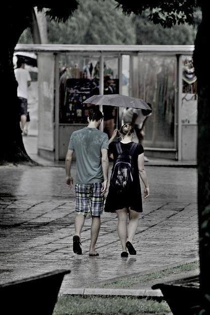 写真: ~Travele~November rain(11月の雨)~♪