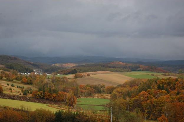 晩秋の丘4