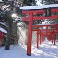 写真: 札幌稲荷神社
