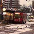 Photos: 函館の美